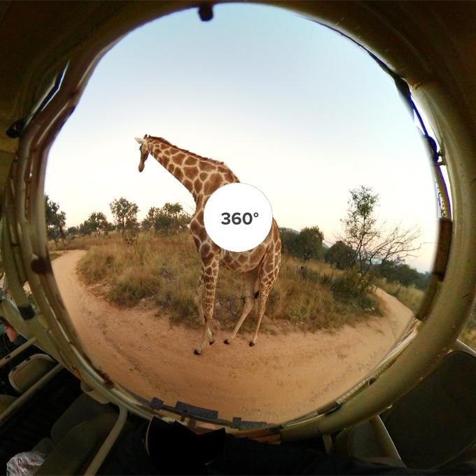 Lion&Safari Park, South Africa